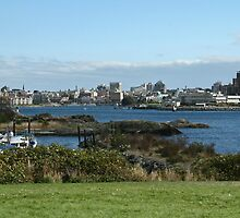 Victoria-Outer Harbour by NancyR