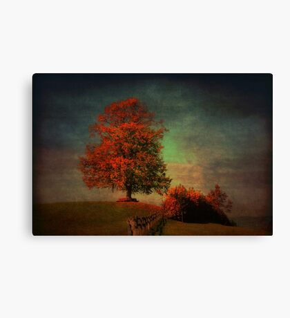 Majestic Linden Berry Tree Canvas Print