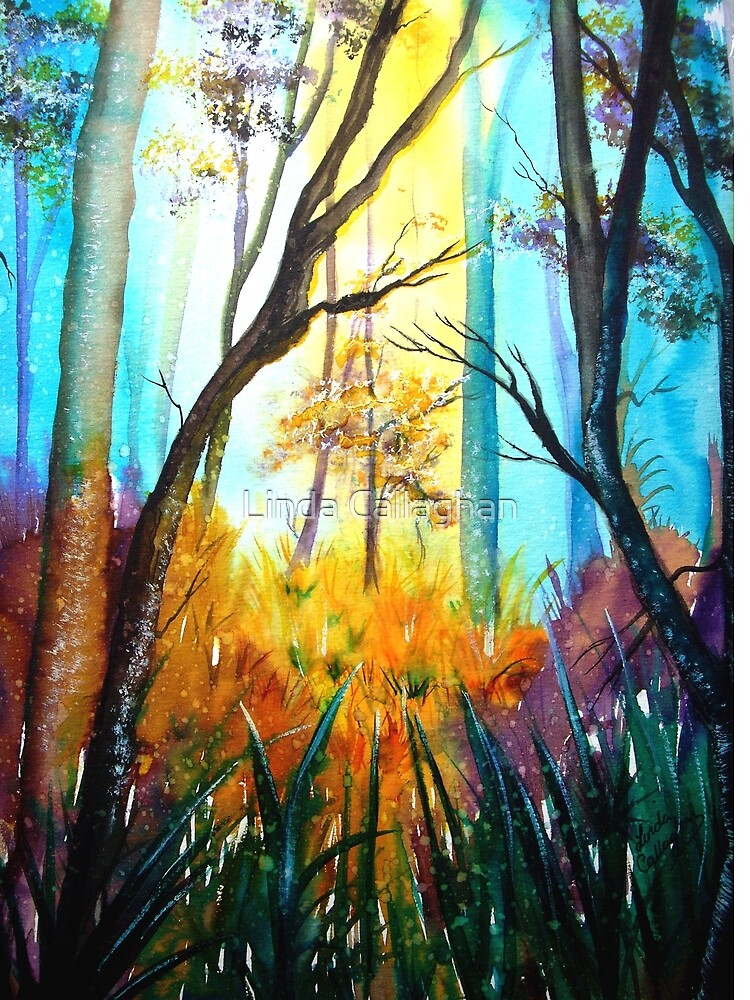 Twilight Trees  by Linda Callaghan