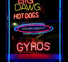 Neon Extravaganza Part Two : Big Dawg by artisandelimage