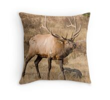 Bull elk in RMNP Throw Pillow