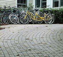 My Bike by Sandra Guzman