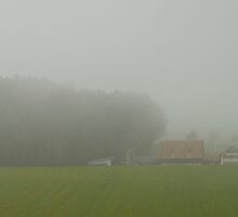 Swiss farmhouse in the fog by Michael Brewer