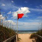 The Red Flag by Susanne Van Hulst
