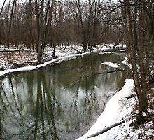 January Stream in Toledo, Ohiio by Susan Russell