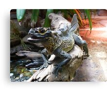 Water Dragon in Reptile House at Melbourne Zoo Canvas Print