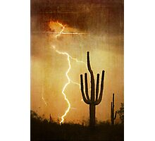 SW Saguaro Desert Landscape Photographic Print