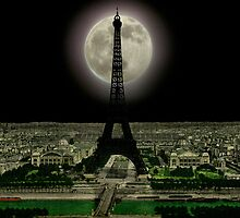 The Eiffel Tower.  by albutross