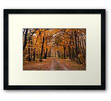 Rush River Autumn Framed Print