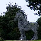 Heavy Horse by ElsT