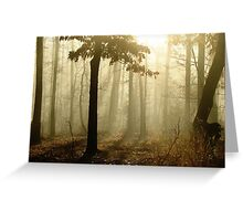 Golden Foggy Forest Greeting Card