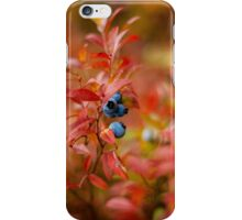 Autumn Blueberries iPhone Case/Skin