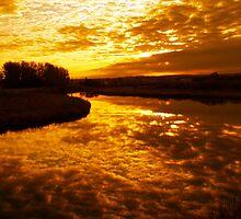 Life Begins at Sunrise by Krista Erickson