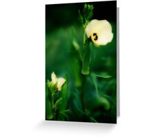 Firstfruits of Okra, and Blooms Greeting Card