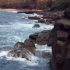 Waves on the rocks  by rattyandpossum