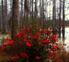 Red bush in the swamp Sticker