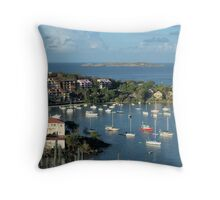Cruz Bay Overlook Throw Pillow