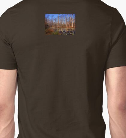 Trees in the swamp of Cypress Gardens SC T-Shirt