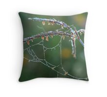 Dew Covered Web on Big Blue Stem Throw Pillow