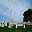 Hillside Graves by Jessica Snyder