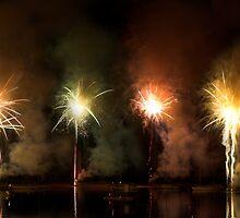 Fireworks 1 by Denise McDermott