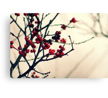...and then we fell in love. Canvas Print