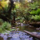 Faeries Pool??? by Andrew S