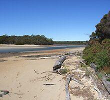 The Black River Estuary, Northwest Tasmania by Jane Bouchard