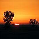 Sunrise over the Warrumbungles Jan 2010 by pedroski