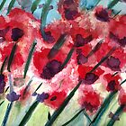 Poppies In Bloom by RobynLee