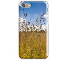 Golden Meadow Blue Sky iPhone Case/Skin