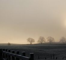 weak sunshine on a foggy morning by angimoo