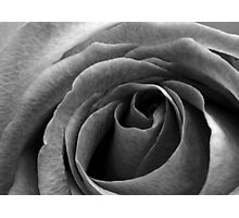 Beauty without colour Photographic Print
