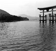 itsukushima tori by amber hill