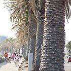 St Kilda beach  by Anne koufos