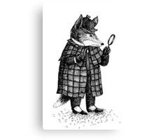 Fox -  Boy Canvas Print