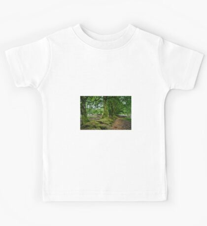 Woodland Scene, Scotland. UK Kids Tee