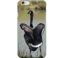 Putting the wings away iPhone Case/Skin