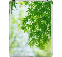 Green leaves of Japanese maple iPad Case/Skin