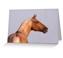 Golden Boy Greeting Card
