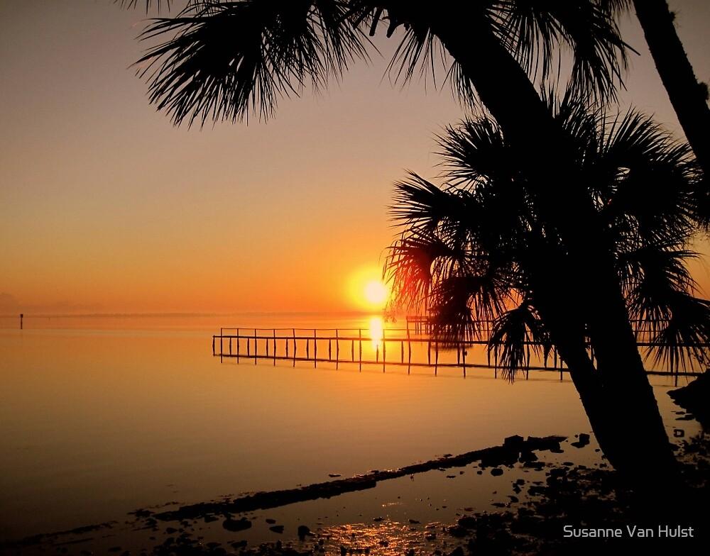 Sunrise in Florida by Susanne Van Hulst