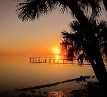 Sunrise in Florida by Susanne Van Hulst