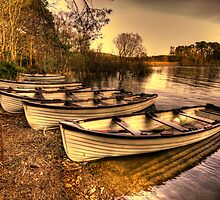 Boats - Roundwood Reservoir by Gerry Chaney
