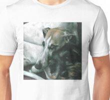 Friends of Danny Unisex T-Shirt