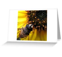 A guest! Greeting Card