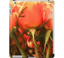 Peach Roses iPad Case/Skin