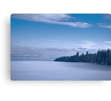 Swiss landscape with a snowy filed, trees and blue sky Canvas Print