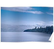 Swiss landscape with a snowy filed, trees and blue sky Poster