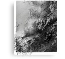 LOOKING OVER AN OCEAN Canvas Print
