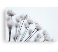 Winter Blossom Metal Print